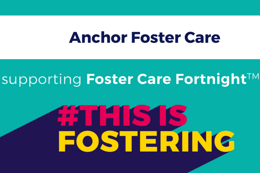 How We Celebrated Foster Care Fortnight™ 2020